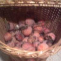 persimmon basket s
