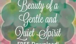 FREE download Beauty of a Gentle and Quiet Spirit; blog.wonwithoutwords.com